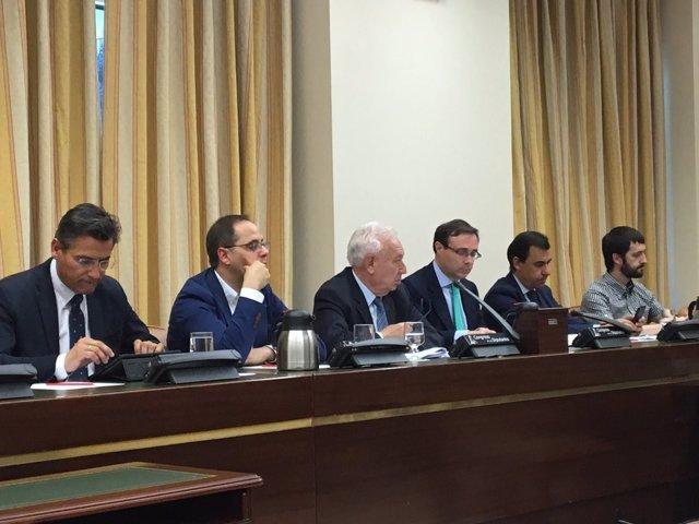 Joséd Manuel García Margallo y la Comisión de Seguridad Nacional