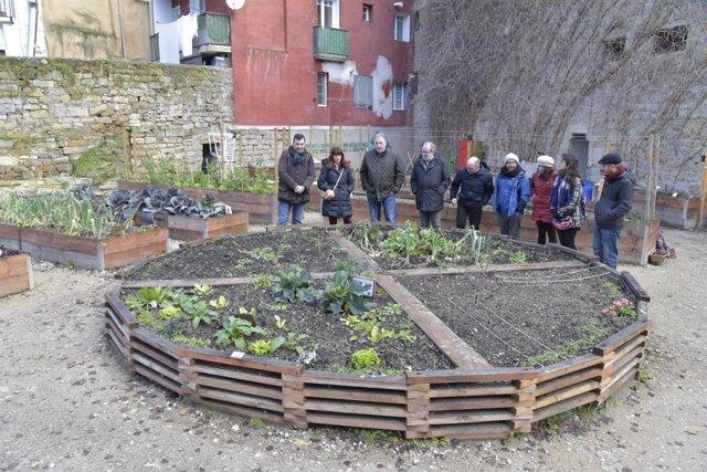 Visita el huerto urbano del Rincón de las Pellejerías