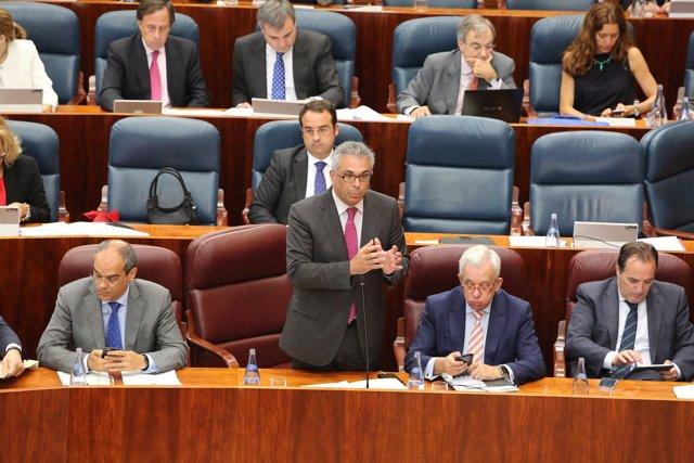El consejero Carlos Izquierdo en la Asamblea de Madrid