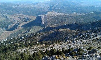 A consulta pública la propuesta de declarar Sierra de las Nieves como Parque Nacional