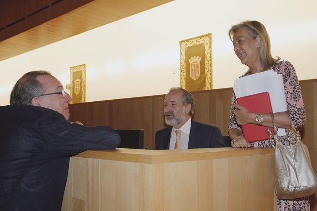 Pleno diputación Sichar Ciudadanos Cs con Caracuel PP y Delgado Bonilla charla