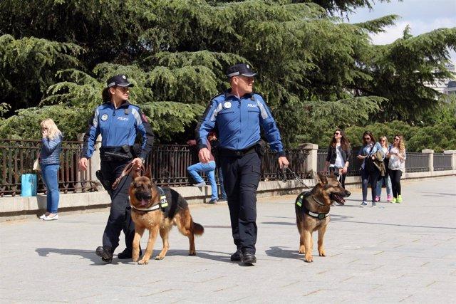 Agentes de la sección canina de Policía Municipal de Madrid