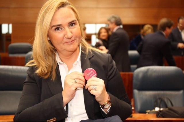 La consejera de Transportes en la Asamblea de Madrid
