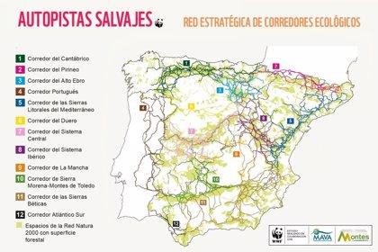 Este mapa identifica doce grandes corredores que emplean los animales para moverse por la península ibérica