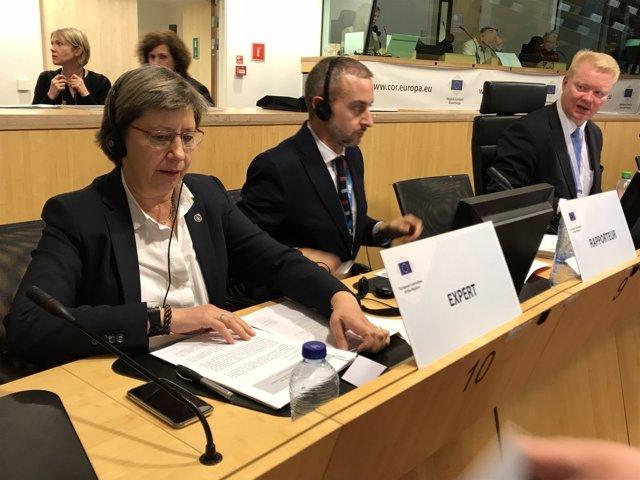 Galicia lidera la comisión de la UE para promover un fondo de financiación