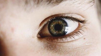 Unos 600 pacientes de glaucoma de Baleares podrían sufrir ceguera total, según una asociación de afectados