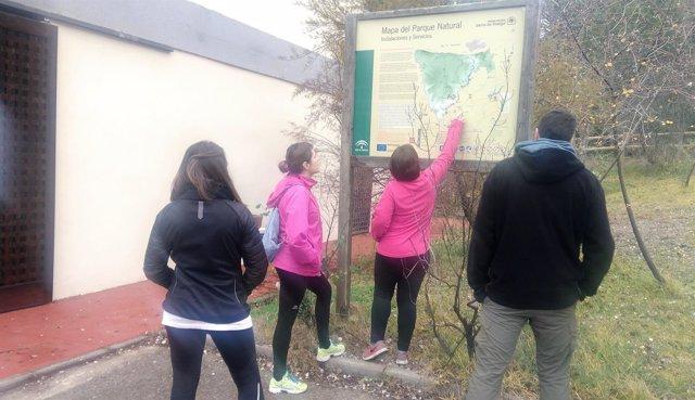 Varios visitantes consultan un mapa del Parque Natural Sierra de Andújar.