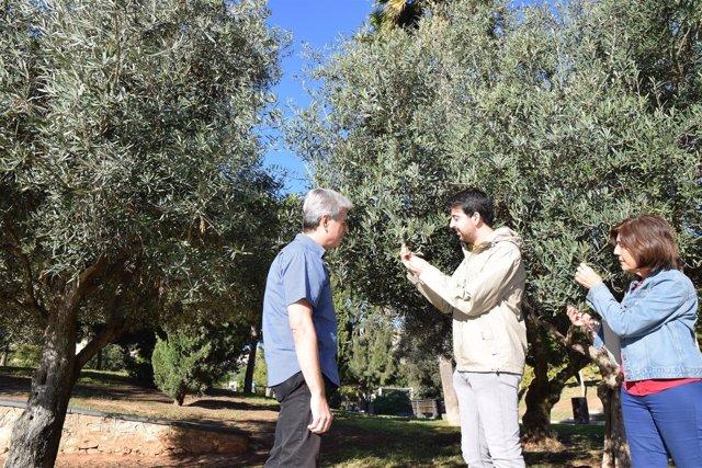 El de Agrónomos advierte del potencial alergénico del parque de Los Juncos