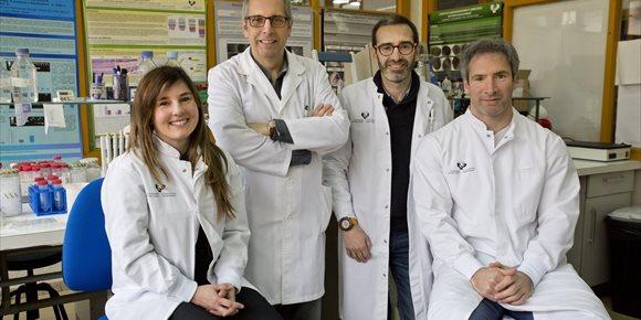 2. UPV/EHUko eta Santiago de Compostelako Unibertsitateko ikertzaileek gibeleko metastasia %80 murriztea lortu dute