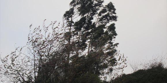 10. Las rachas de viento alcanzan los 102,7 km/h en Matxitxako