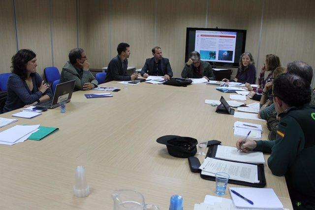 El Govern se reúne este jueves con Madrid por la paralización de la ampliación del Parque Nacional de Cabrera