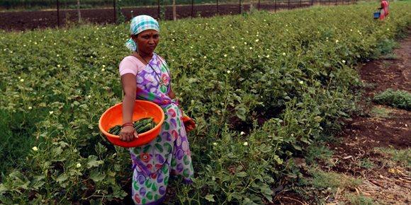 8. Miles de agricultoras indias marchan hasta Bombay para reivindicar sus derechos
