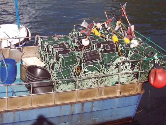 Utiles de pesca.