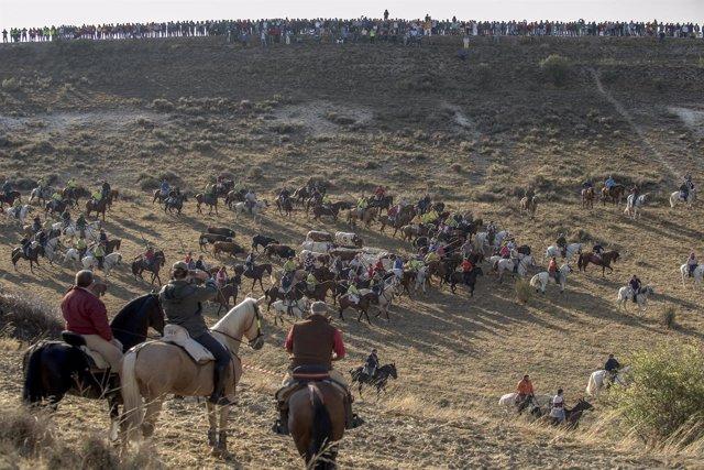 Declación De Las Fiestas De Los Encierros De Cuéllar Como Fiesta De Interés Turí