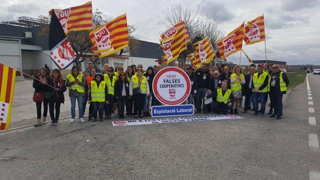 Concentración de sindicalistas ante el matadero Fortune Pig de Mollerussa