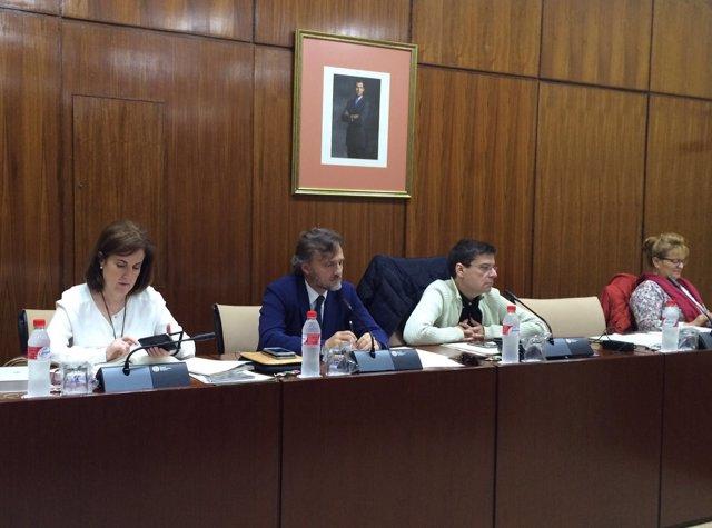 El consejero andaluz José Fiscal, en Comisión de Medio Ambiente del Parlamento