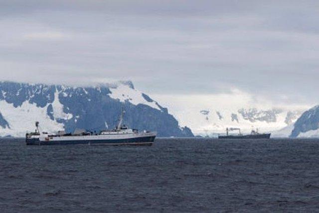Barcos pesqueros en la Antártida