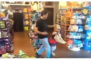 Un perro baila salsa con su dueño y causa furor en las redes