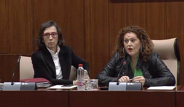 La consejera de Justicia e Interior en comisión