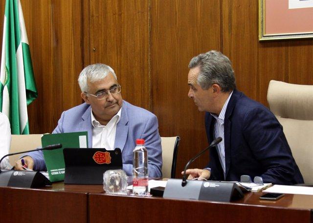 El consejero de Economía Antonio Ramírez de Arellano en comisión en Parlamento