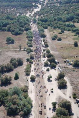Hermandades saliendo de la aldea de El Rocío, en Almonte (Huelva).