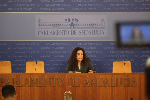 Inmaculada Nieto, este miércoles, en rueda de prensa