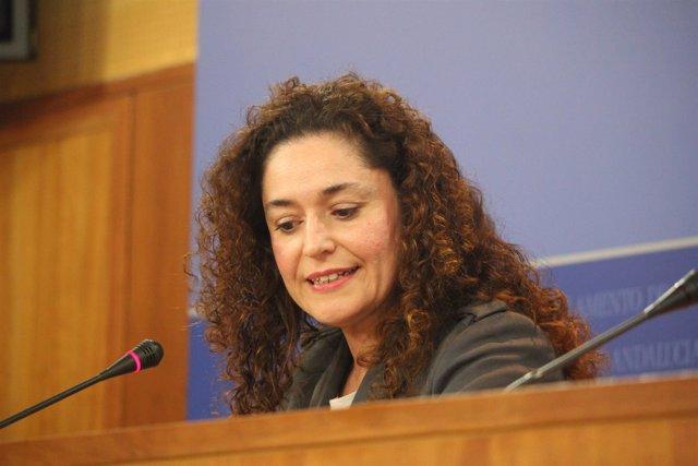 La responsable de Política Institucional de IULV-CA, Inmaculada Nieto
