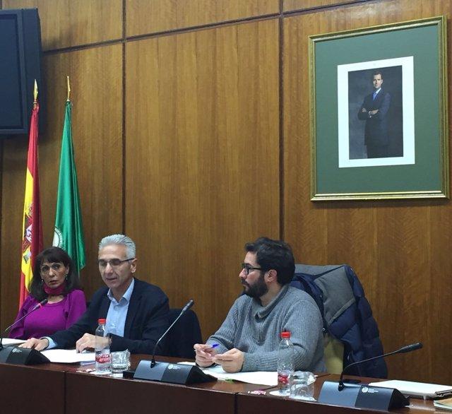 El consejero Miguel Ángel Vázquez en la Comisión de Cultura en el Parlamento