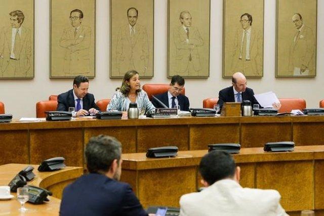 La secretaria de I+D+i, Carmen Vela, en el Congreso