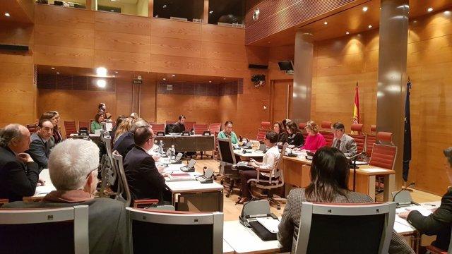 Comparecencia de Mónica Oltra en la comisión de investigación del Senado