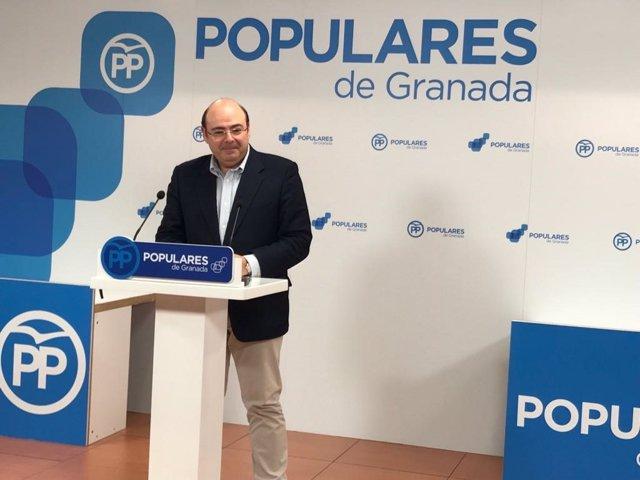 El presidente del PP de Granada, Sebastián Pérez