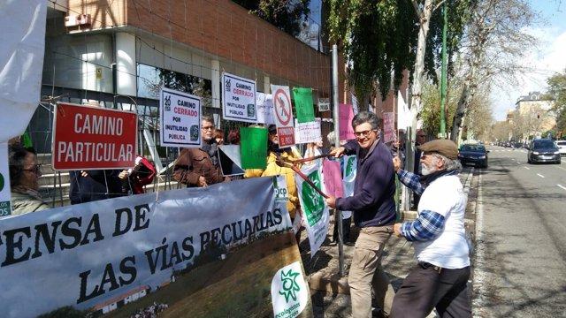 Concentración de ecologistas contra el abandono de vías pecuarias