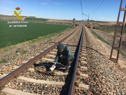 Investigado un vecino de Olivares (Sevilla) por la muerte de animales atados a la vía del tren