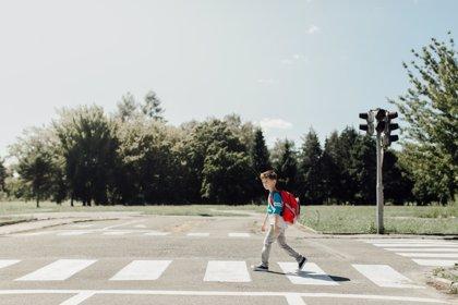 Por qué los niños no deben cruzar solos la calle, una explicación científica