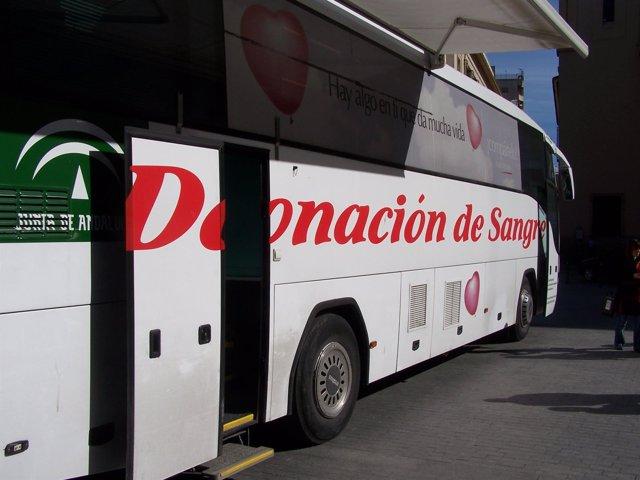1 Foto Junta (Autobús Donación)