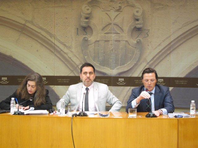 Abogado Javier Barinaga en comparecencia Parlamento