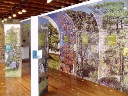 Los centros de visitantes del CIMA ofrecen este año más de 150 actividades