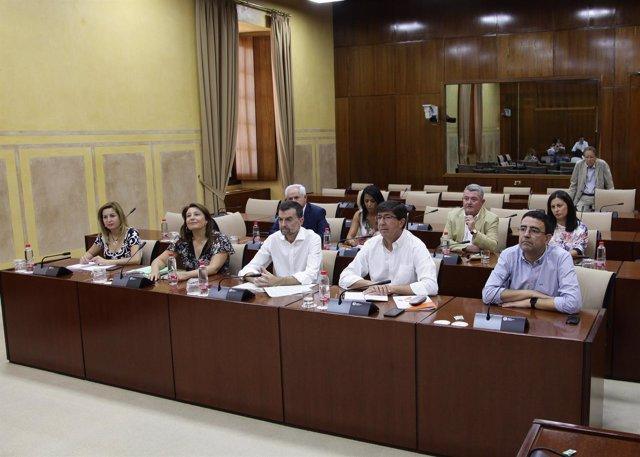 Grupo de trabajo sobre la financiación autonómica