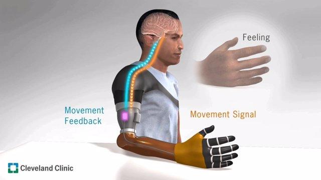 La percepción del movimiento ilusorio mejora el control para las manos protésica