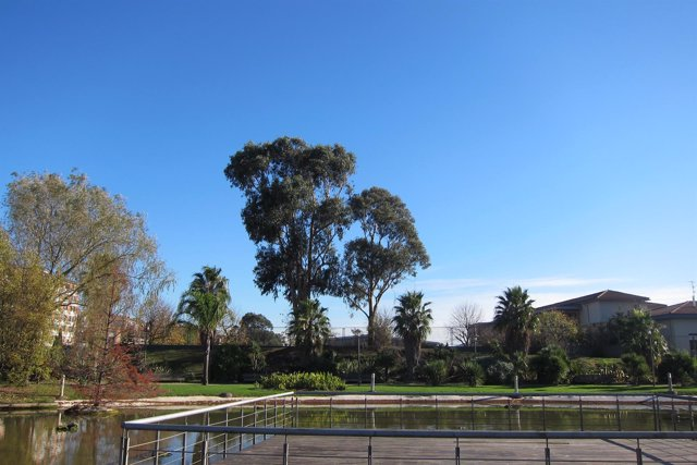 Imagen de Archivo. El jardín botánico de Barakaldo