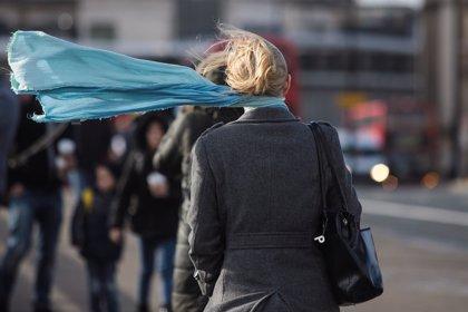 Activado el Plan Municipal de Protección Civil ante el riesgo de fuertes vientos en Zaragoza