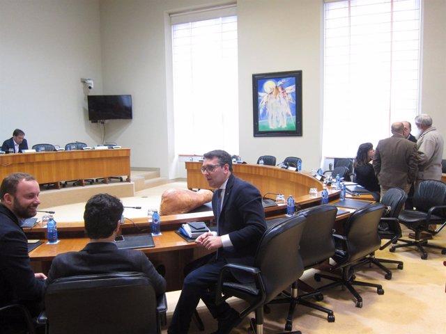 Comisión de incendios en el Parlamento gallego
