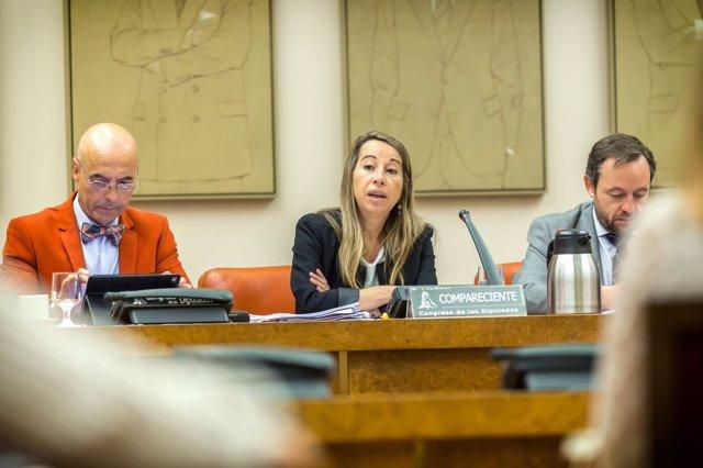 La secretaria de Estado de Función Pública, Elena Collado, en el Congreso