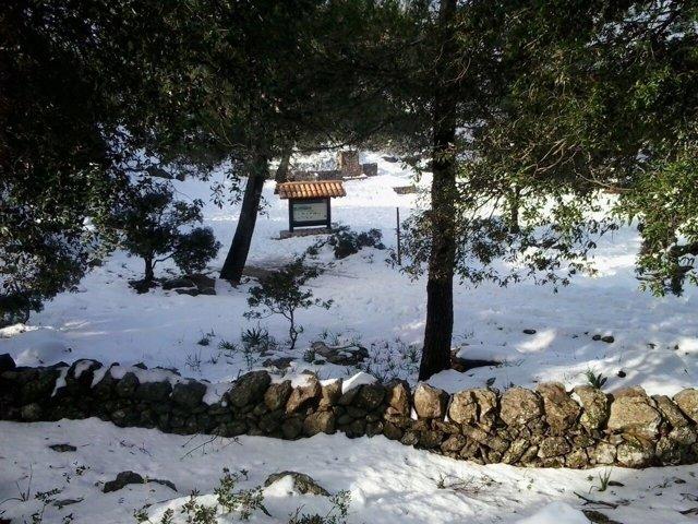 Nevada en Mallorca