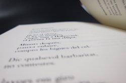 Marc Granell protagonitza el Dia Mundial de la Poesia amb un poema traduït a 30 idiomes (EUROPA PRESS - Archivo)