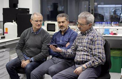 Investigadores desarrollarán un prototipo que detecta células tumorales en sangre