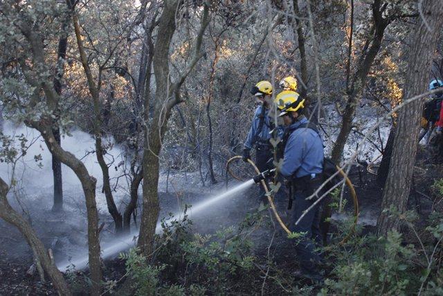 Bomberos en el incendio de Vilopriu Baix Empordà