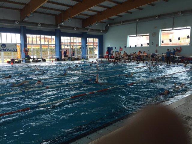 Niños de seis a doce años de toda la provincia disfrutan de la natación.