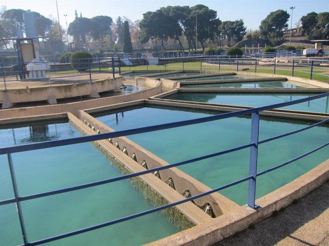 Potabilizadora, depuración de agua