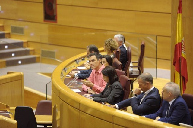 Pedro Sánchez, Margarita Robles y Ander Gil en la reunión del PSOE en el Senado